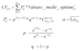 valoarea temporară a opțiunii de calcul